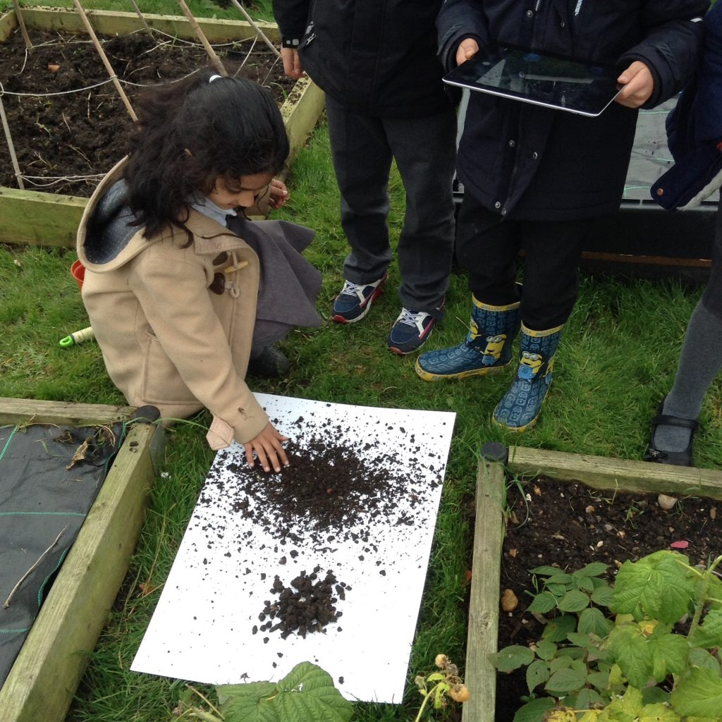 Soil investigation the orchard primary school for Soil investigation report